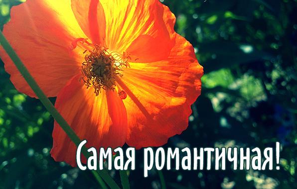 Картинки улыбнись красотка 1