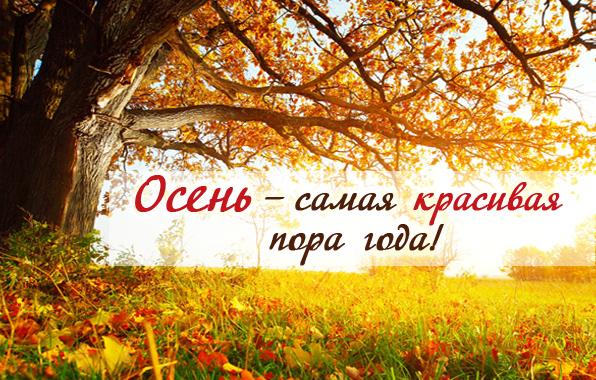 осень картинки с надписями красивые